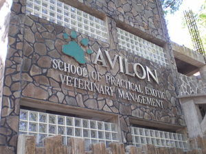 Avilon Zoo - The list of zoos in the world